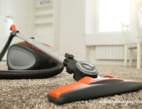 Nairobi Carpet Cleaning Services at Bargain Price